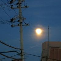 足柄の月と奈良の月(18時間違い)