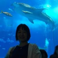 沖縄旅行行ってきました