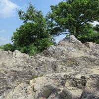 流紋岩質凝灰岩