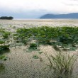 昨日は琵琶湖へ。。。夕暮れ時☆