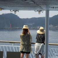 式根島の写真を撮る姿があった 397