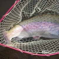釣りGirl の釣行日記〜那須高原で大物ゲットっw
