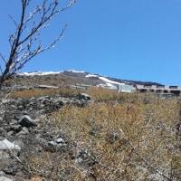 村山登山道の様子