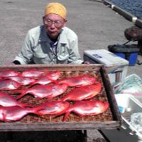高島屋級金目鯛復活