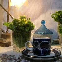 未明に●カフェ『飼い菜の花』?
