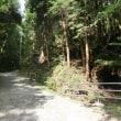 2017年7月19日(水) 和泉の山歩き 🎐鴻心館合気道軽登山部