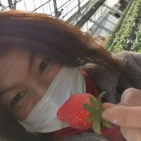 秩父イチゴ狩りと「三峯神社」〜御朱印の旅