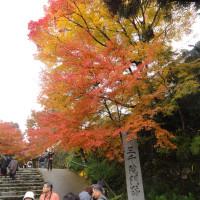 京都の秋.....