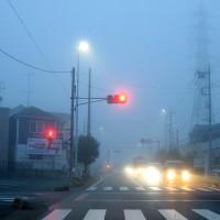 12月05日 霧がすごかった