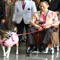 死去のタイ国王 動物愛護の救世主