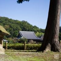 浄土庭園 金沢 称名寺