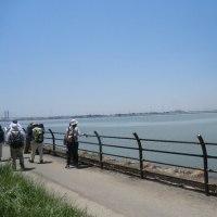 藤前干潟から金城埠頭へ