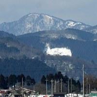 百里ヶ岳再下見へ・雪解け田んぼの鳥