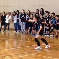 4月30日 モルテンカップ小田原地域予選🏐🏐🏐