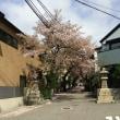 青空晴れの日神戸です。