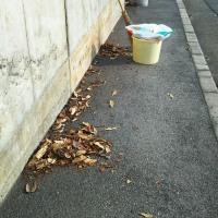 日課の初王神社の落ち葉🍂掃除