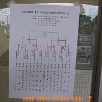 関東東北北海道壮年野球観戦