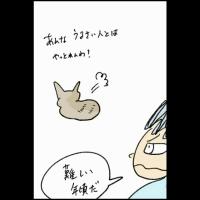 ハクションピコ太郎