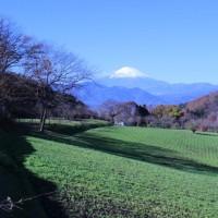 篠窪(しのくぼ)から見る 朝の富士山も綺麗