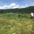草刈り作業(ヒマワリ育成)