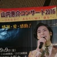 恵ちゃんのコンサート!!!