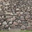 岡山城の石垣(古)