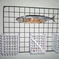 焼き魚??