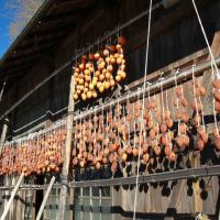 須賀川の干し柿