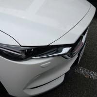 新車ディーラー