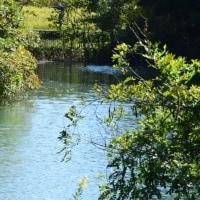 四季折々746  秋の長池公園2