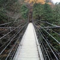秋の付知峡