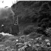 蒸気機関車 呉線のC62普通列車