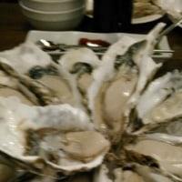 牡蠣、牡蠣、牡蠣~⤴