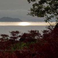 湖畔の初秋