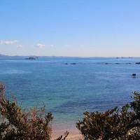 早春の三浦半島の青い海