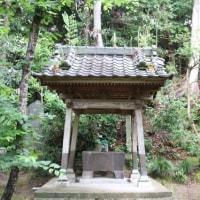 橘樹神社/千葉県茂原市(Tachibana Jinja,Mobara-shi,Chiba,Japan)
