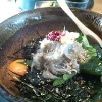 和歌山 生しらす丼