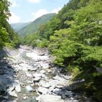 徳島ツアー 7