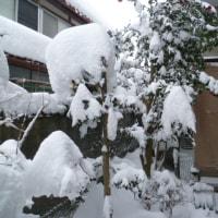 雪かきで筋肉痛