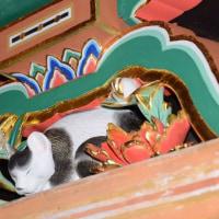 「眠り猫」59年ぶりお色直し終える 日光東照宮
