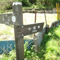 小梨山大沢ルート 強風で撤退 H-29- 4-19
