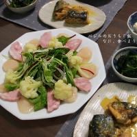 明宝ハムのサラダとサバ味噌煮