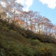 福井県のみつまた山まで行きました。