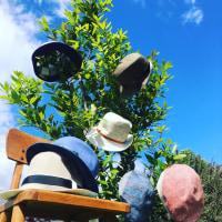 もう日差しが夏ですね!6月の帽子のセミオーダー会