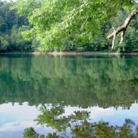 原始の湖シュンクシタカラ湖に攻撃的外来種ウチダザリガニ発見