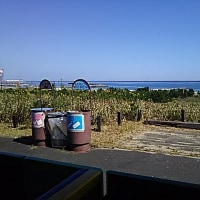 ひたち海浜公園を歩く
