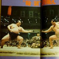 Sumo Decade - �̤θ��µ�