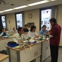 5th Advanced Education