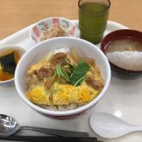 加賀のゆびぬき No.75(2017-19) ピンクの唐辛子🌶