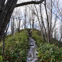 三角山から大倉山